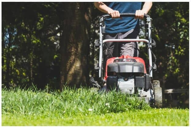 Best Lawn Mowers for Tall Grass