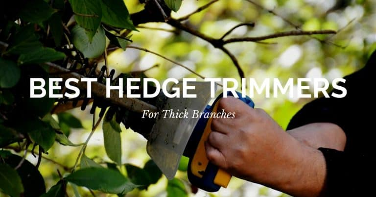 10 Best Hedge Trimmers for Thick Branches