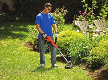 Best Lightweight Weed Eaters